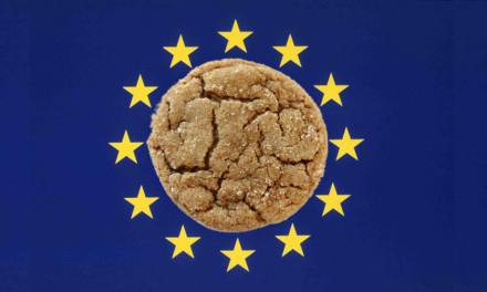 Normativa Cookie, come adeguarsi